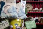 DMA_Dillard Market_Interior_0053